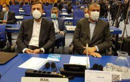 حل بحران هستهای در جهان با عملکرد درست آژانس ممکن میشود